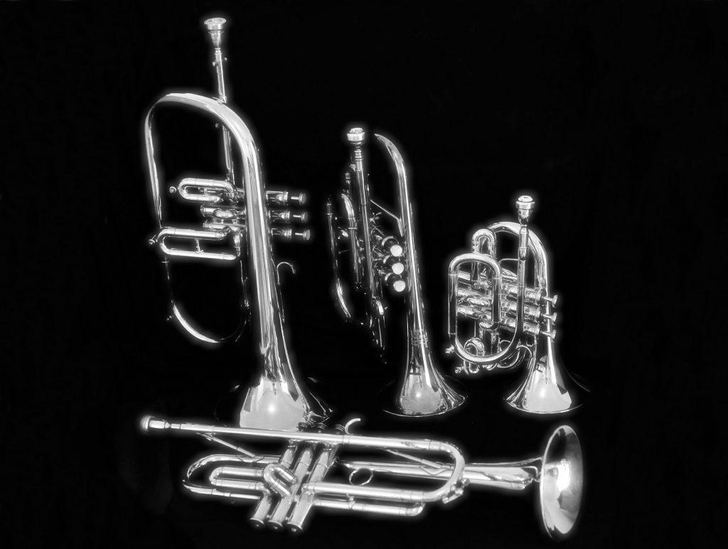 la musique - trompettes